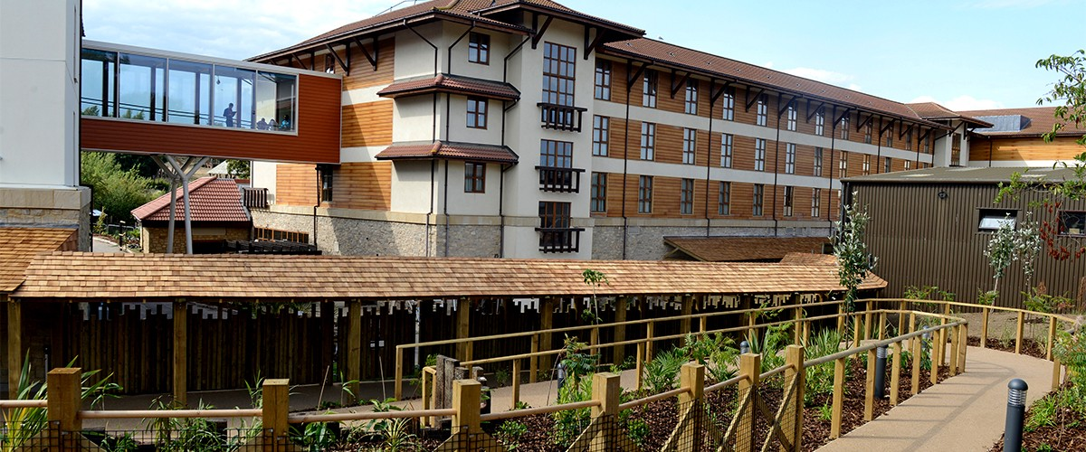 Chessington World Of Adventures Azteca Hotel Integral Group