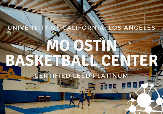 Mo Ostin Basketball Center Platinum